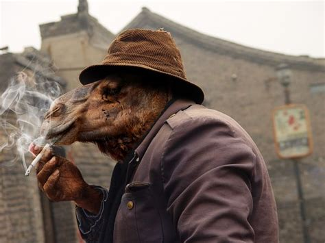 Photoshop Guide - The Making Of Smoking Camel - Pxleyes